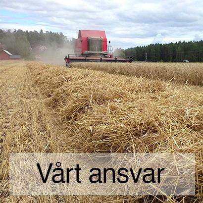 Fröö Gård - Vårt ansvar