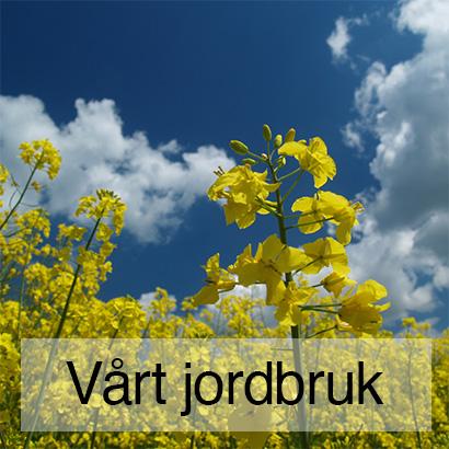 Fröö Gård - Vårt jordbruk